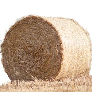 New Season Hay, Haylage & Straw