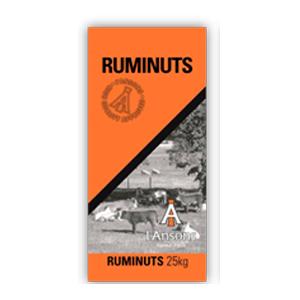I'Ansons Ruminuts